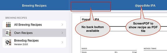 iPad Pro (11-inch) 2021-09-09 10-56-57